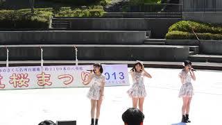 八重桜まつり 2013.4.27での危ない女の子シスターズ(AOS)のライブ1部で...