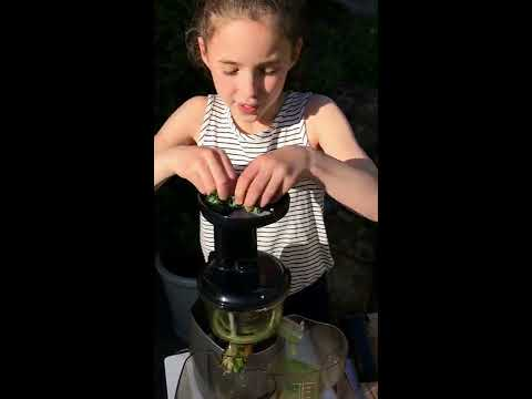 Super Green Cold-Pressed Juice For Kids