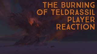 The Burning Of Teldrassil: Why Are Players Disappointed?
