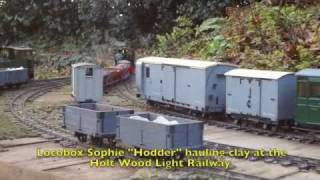 Industrial Narrow Gauge - Live Steam Garden Railway