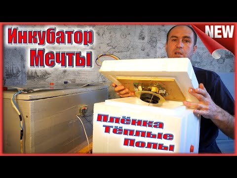Инкубатор моей мечты. Выводимость 100%.  Минусы плёнки.  Инфракрасный теплый пол.