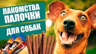 Лакомства для собак Трикси Ротолинис   Обзор лакомства Трикси   Trixie Rotolines review