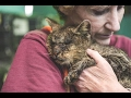 長い間、誰からも触れられなかった猫。抱きしめてくれた女性に、精一杯の愛情を返す姿に胸が熱くなる 【感動する話】