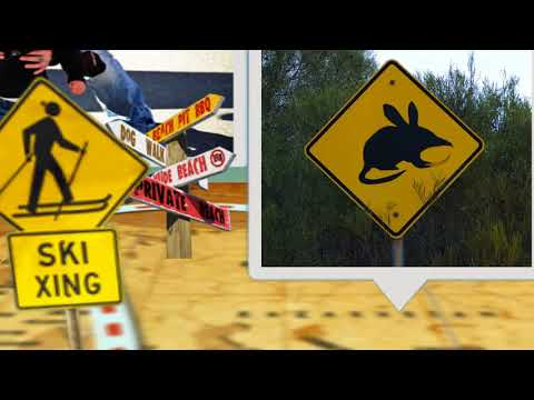 Yellow road signs (Australia, Canada, New Zealand)