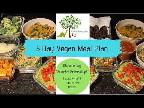 5 Day Vegan Meal Prep | Slimming World Friendly
