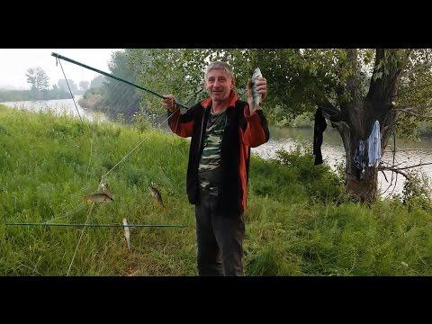 I. Ставные сети / Рыболовные сети и экраны