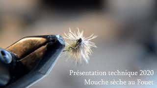 Stages Mouches Sèches au Fouet - Truites en Ariège Pyrénées - 2020