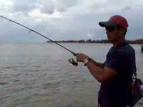 Barracuda fishing youtube for Om fishing sinkers