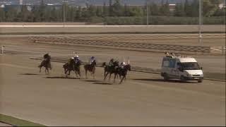 Vidéo de la course PMU PREMI MILORD DE NORIS