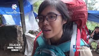 pendakian seru ke ranu kumbolo jelajah taman nasional bromo tengger semeru