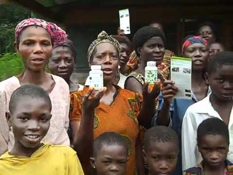 Moringa Project in Ghana