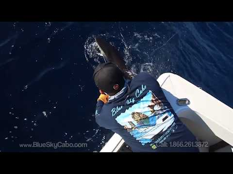 Best Cabo Fishing Charter