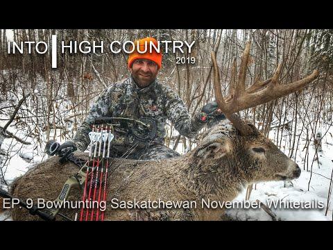 Bowhunting Saskatchewan November Whitetails