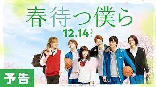 映画『春待つ僕ら』予告【HD】2018年12月14日(金)公開