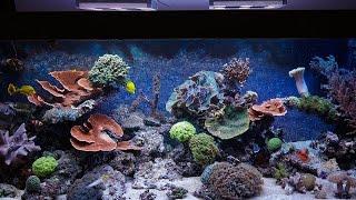 1000 Liter Riffaquarium mit GHL ProfiLux 3