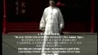 Master Chen Yong Fa teaching DVD series Lohan Qigong Chi kung 十八羅漢功
