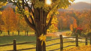 Tie a yellow ribbon 'round the ole oak tree Lyrics Fixed