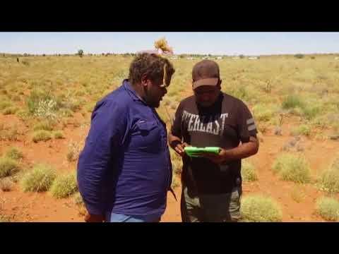 هذا الصباح-أسرار صخرة -أولورو- بأستراليا  - نشر قبل 2 ساعة