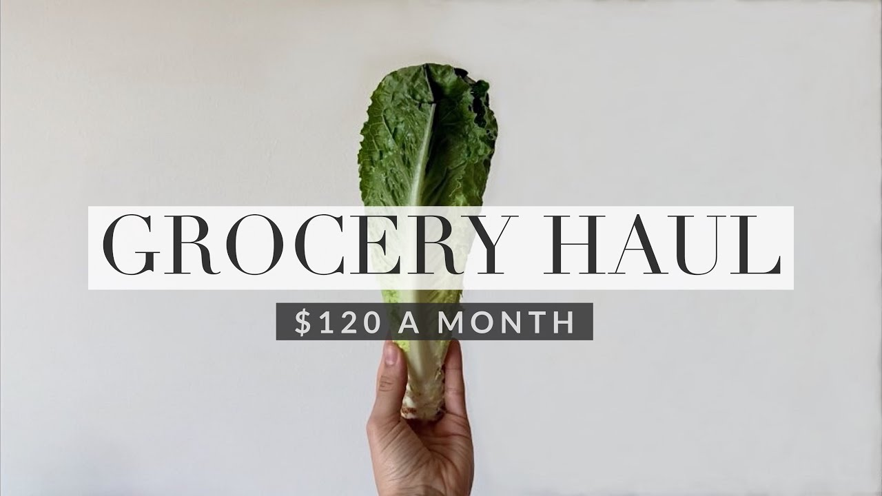 Grocery Haul $120 a month for two   Vegan & Gluten free