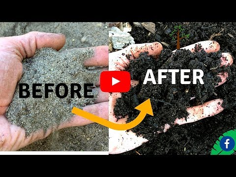 5 TIPS  FOR BUILDING PERFECT HEALTHY SOIL FOR FREE
