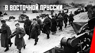 В Восточной Пруссии (фронтовой выпуск № 11) (1945) фильм