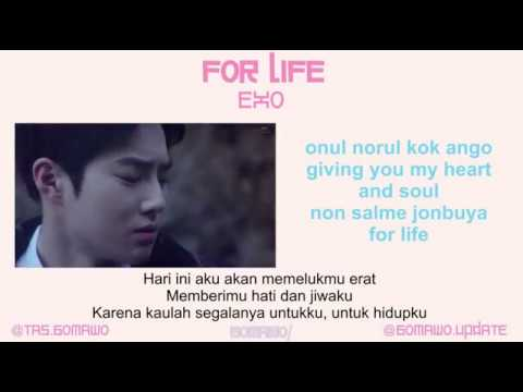EXO - FOR LIFE [MV & EASY LYRIC ROM+INDO]