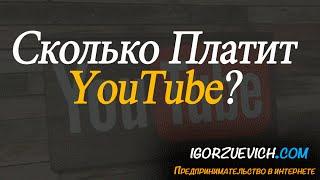 Сколько платят за 1000 просмотров на youtube / реальный заработок на ютубе