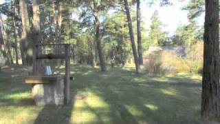 Finding Birds in Estonia