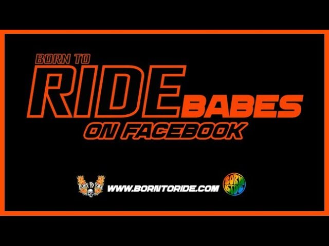 Born To Ride BABES