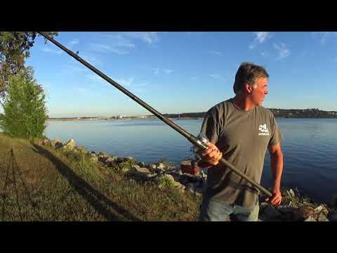 Road Trip: Pickwick Reservoir, Savannah Tennessee