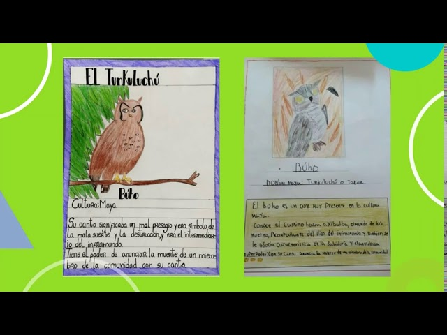 Cartas coleccionables 7º - Pumahue Chicureo