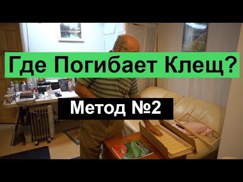 Сибирский мёд с предгорья Саян. Продажа Мёда в Красноярске