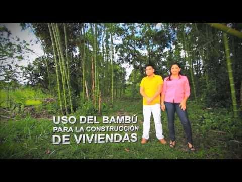 USO DE BAMBU PARA CONSTRUCCIÓ...