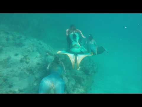 Fearless by The Caribbean Mermaid Academy
