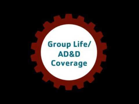 Car Insurance & Van Insurance Cover