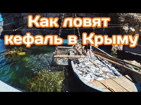 КРЫМ 2017 / Как ловят кефаль в Крыму.