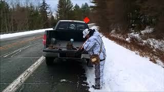 ADIRONDACK COYOTE HUNTING--THE LEARNING CURVE