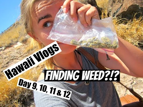 HAWAII VACATION DAY 9, 10, 11 & 12   I FOUND WEED?!?