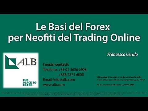 nozioni di base sul forex trading youtube azienda commerciale aziendale btc qatar