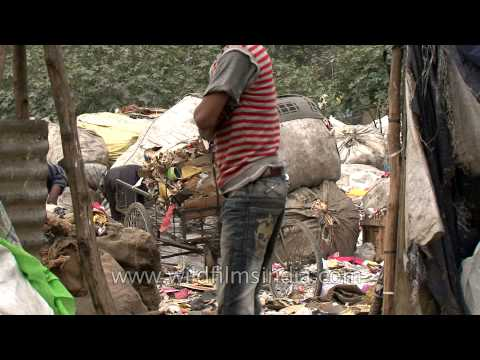 Collecting trash for survival : Delhi rag pickers
