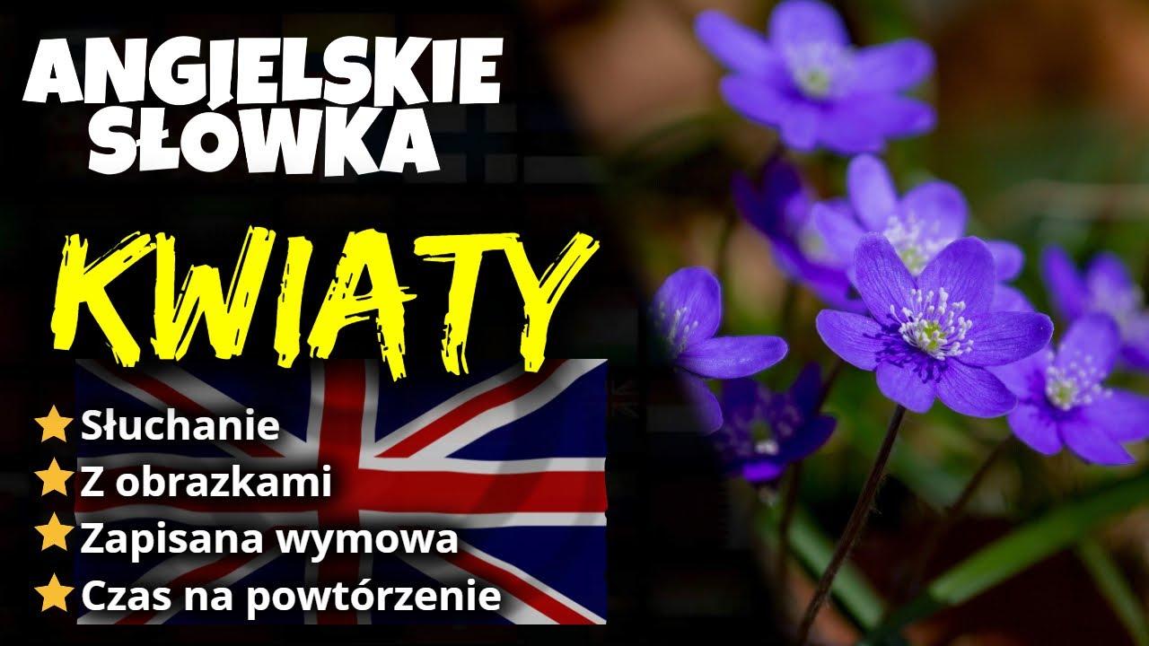 Kwiaty Po Angielsku Youtube