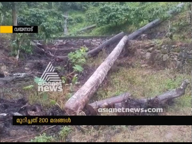 Case against KM Mani's son in law for cutting trees