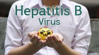 เฮพปะดีเอ็นเอวิริดี๊ - ไวรัสตับอักเสบบี