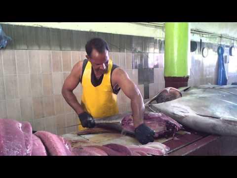 Maldives fish market-usman