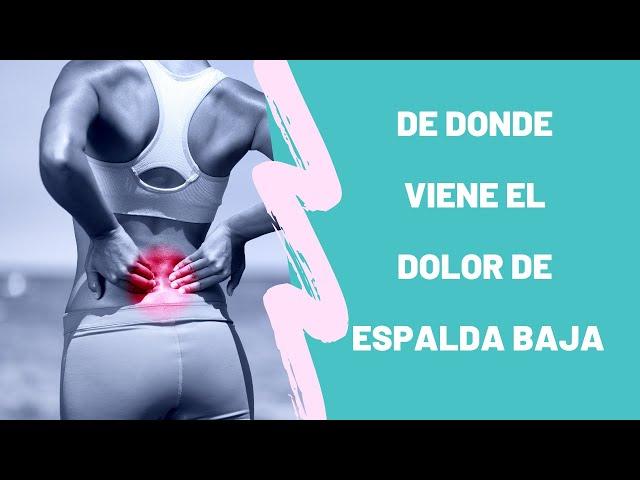 De donde viene el dolor de espalda baja