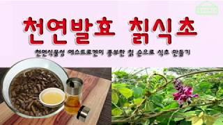 칡식초 만들기  (에스트로겐이 풍부한 칡순 천연발효식초…