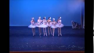 Scuola Progetto Danza  3^ CORSO PARTE 2 SWAN LAKE 2014