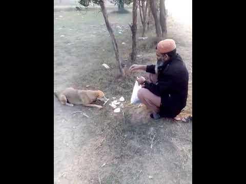 Janwaron Se B Pyar Karna Chahye