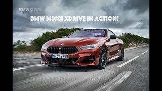 2019 BMW M850i xDrive in action!