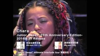 Chara 「Junior Sweet -25th Anniversary Edition-」 トレイラー